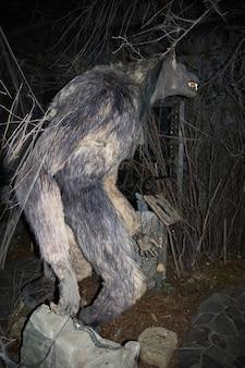2021年6月、ロシアのサンクトペテルブルクにある動物寓話博物館の暗闇と枝の間で横顔に立っている狼男。