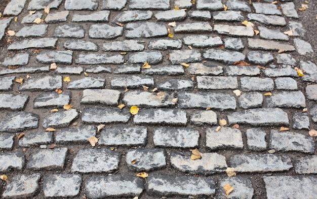 雨上がりの石畳の石を黄色の葉で濡らします。クローズアップショット