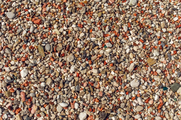 Wet colorful pebble on shore