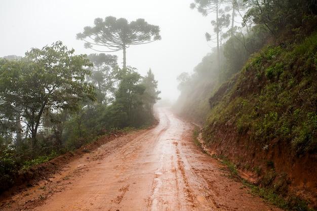 Влажная грязная сельская дорога - грязь - с туманом