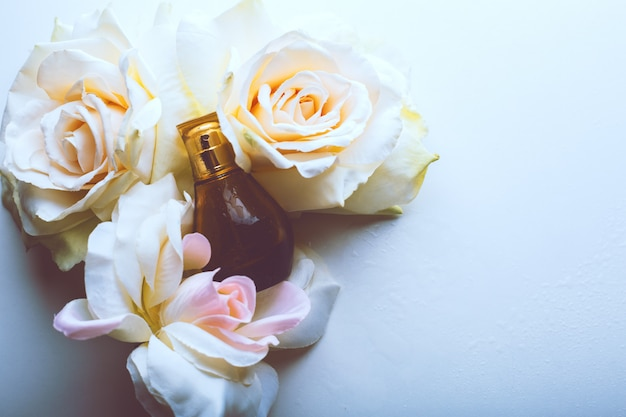 Wet perfume with roses on blue surface