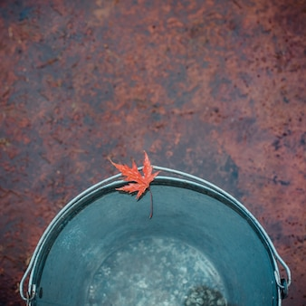 Wet red maple leaf lies on the edge of the tin bucket.