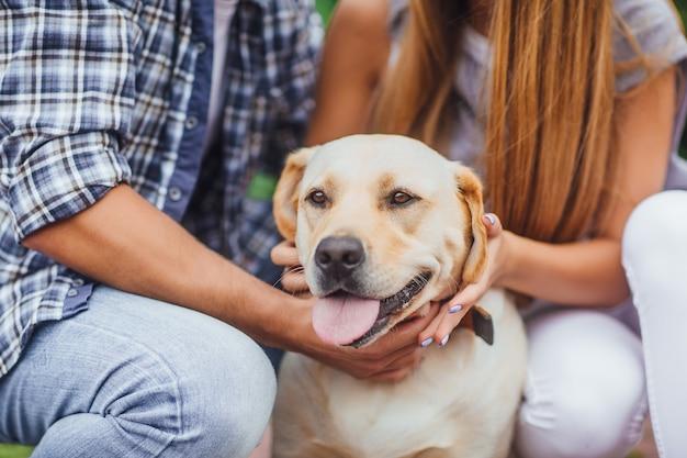 Какой милый момент! молодая пара, отдыхая с собакой. счастливый золотой лабрадор.