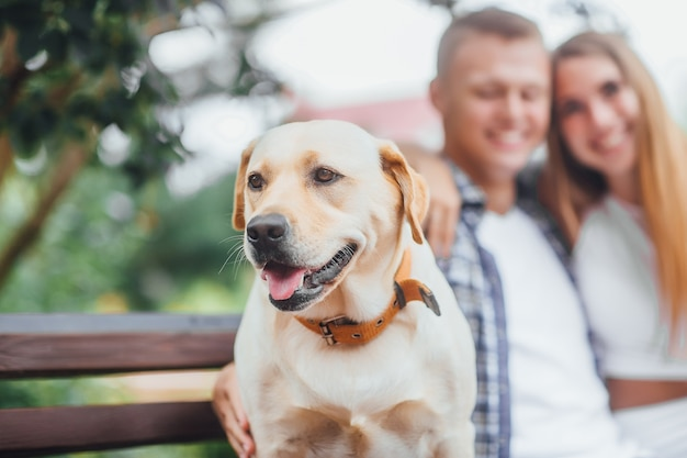 Che bravo ragazzo! bellissimo labrador dorato con guinzaglio seduto con i suoi proprietari al parco