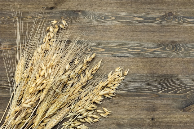 Wheat and barley ears in a sheaf in the lower left corner of the image on a table of dark wood.