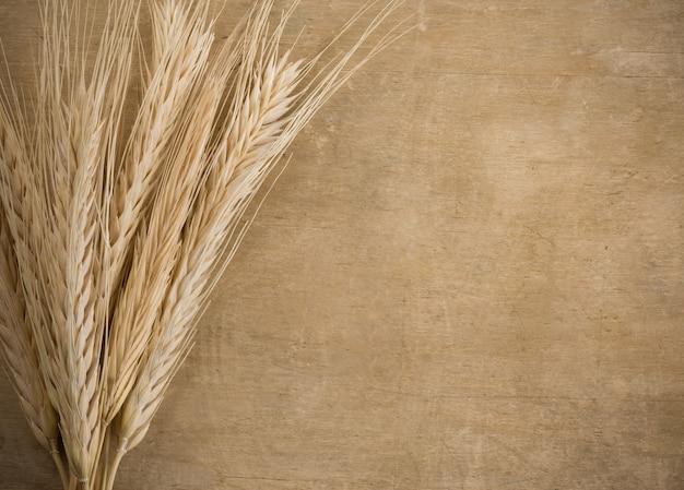 木の質感の小麦ボーダースパイク