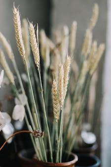 세라믹 냄비 소박한 스타일 여름 정물에 밀 귀