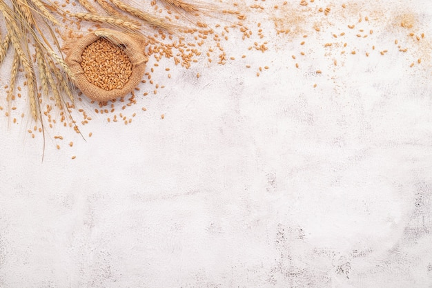 Wheat ears and wheat grains set up on white concrete background.
