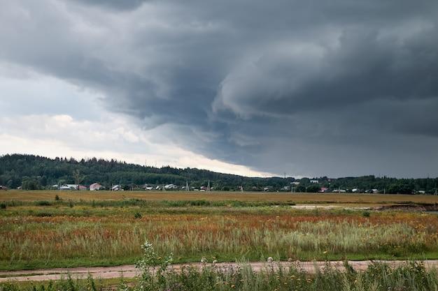 Поле пшеницы и дождливые облака
