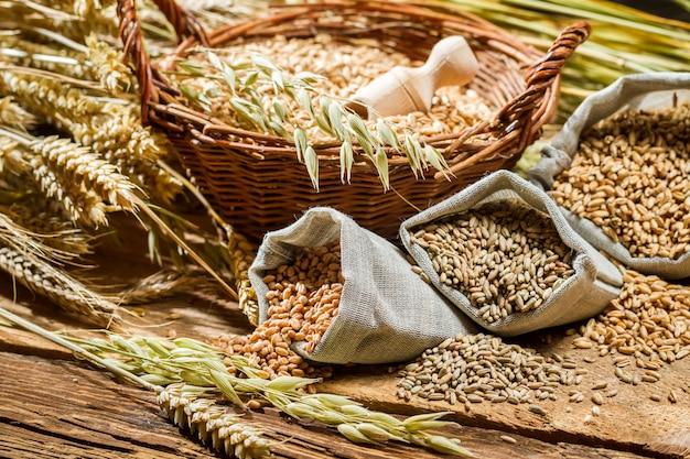小麦粒と小麦