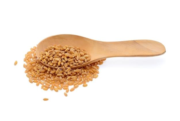 Зерно пшеницы, изолированные на белом фоне