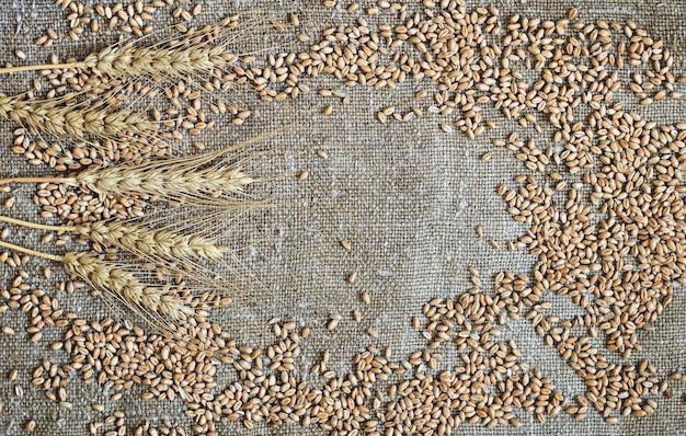 麦粒と穂が荒布に散らばっている