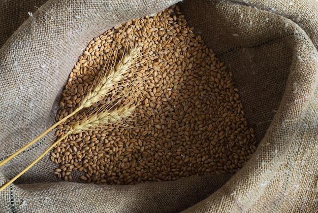 袋の中の小麦粒と耳
