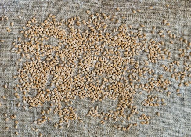 麦粒が荒布に散らばっている