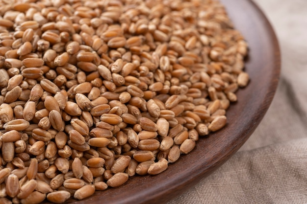 자루에 밀 곡물입니다. 나무 접시에 시리얼 씨앗의 클로즈업입니다. 보기를 닫습니다