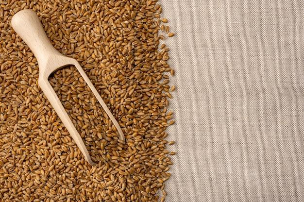밀 곡물. 삼 베 바탕에 나무 국자에 밀 곡물. 농업 배경