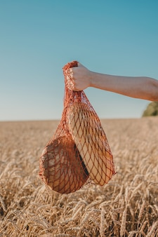 Wheat harvest in a bag on a background with cereals