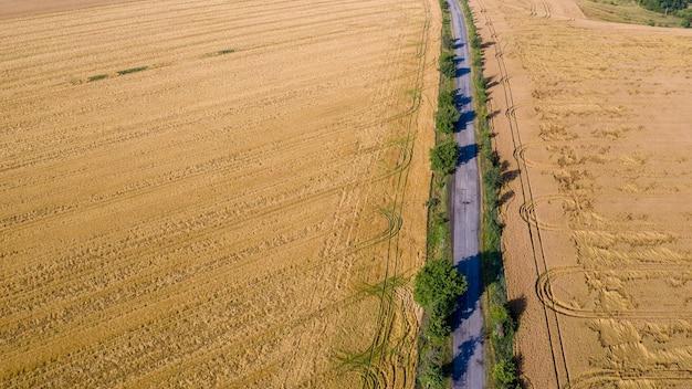 雷雨によって破壊された小麦の収穫。朝夏の風景の背景