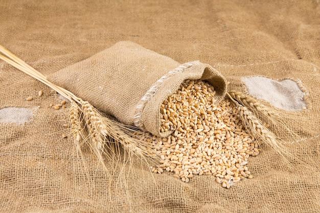 Изолированная пшеница