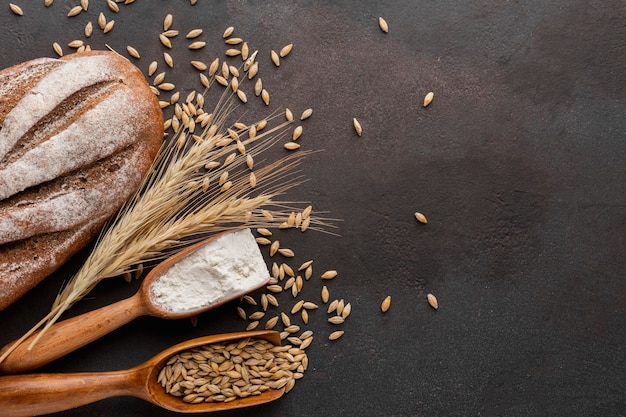 Wheat seeds and baked bread