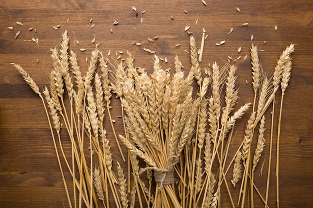 小麦小穂パン収穫の概念