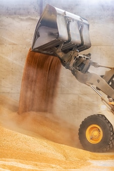 Wheel loader close up, excavator loading sand at construction site.