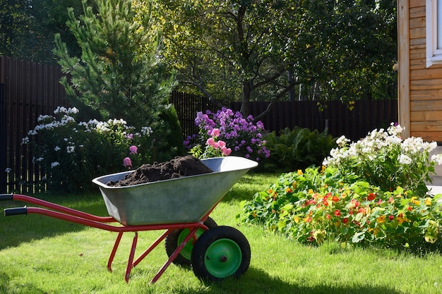 民間農家の手入れの行き届いたフロックスの花と緑の芝生の堆肥でいっぱいの手押し車。季節の掃除庭。屋外。