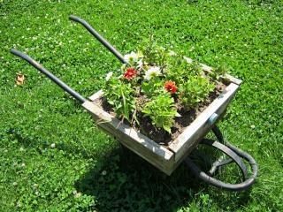 Wheelbarrow  pushcart