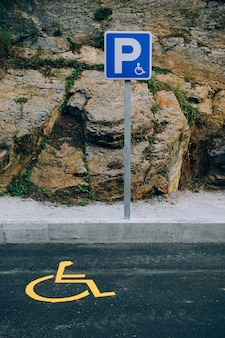 Wheelchair traffic signal in the street