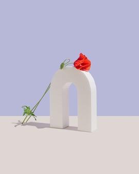 파스텔과 베이지색 보라색 벽에 하나의 붉은 꽃이 있는 흰색 미적 모양. 개념 예술. 봄 배경의 최소한의 디자인.