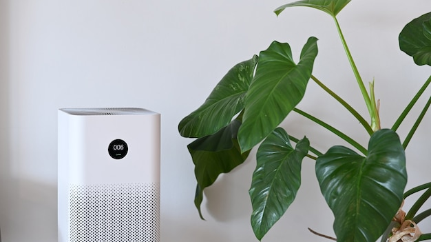 White air purifier and houseplant in living room for fresh air and healthy wellness life.