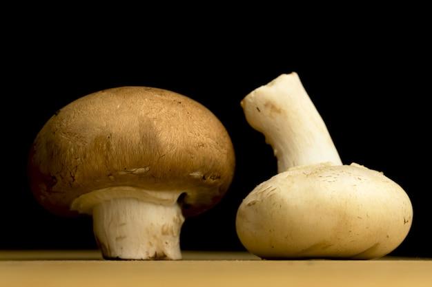 Белые и коричневые грибы на черном фоне, фото концепции органических и натуральных ингредиентов