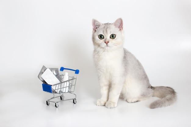 Бело-серый кот сидит на белой поверхности с тележкой для покупок, полной таблеток и лекарств. лекарства и товары для домашних животных.