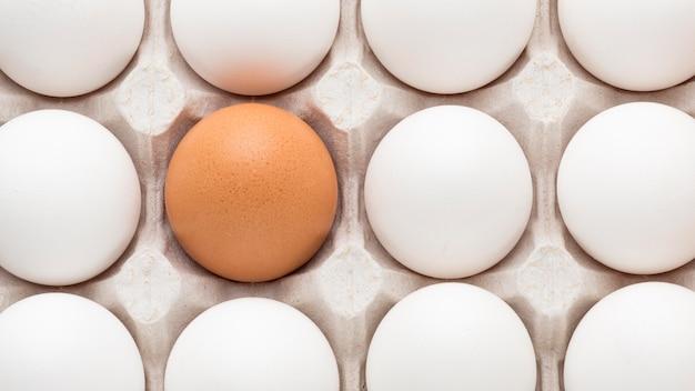 Белое и одно коричневое яйцо