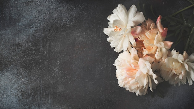 Рамка из белых и розовых пионов на темном фоне, открытка, копия пространства, вид сверху, баннер Premium Фотографии