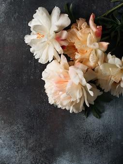 Рамка из белых и розовых пионов на темном фоне, открытка, пространство для копирования, вид сверху, вертикальный