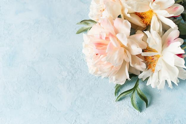 Рамка из белых и розовых пионов на синем фоне, копией пространства