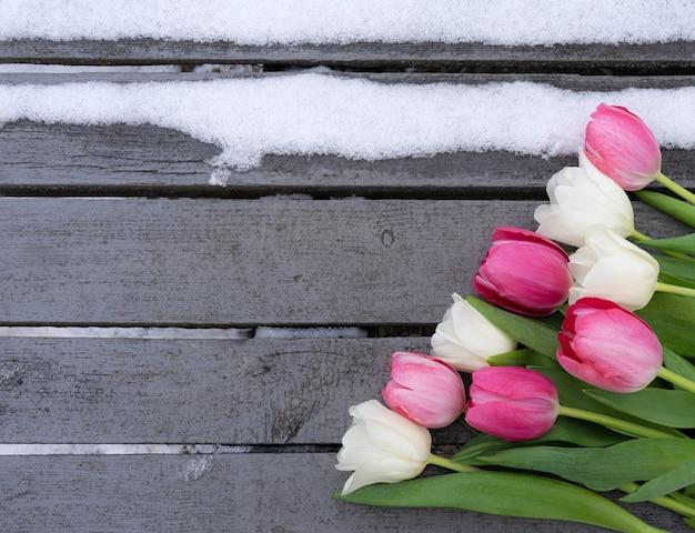 デザインのためのコピースペースと雪と木製の背景に白とピンクのチューリップ