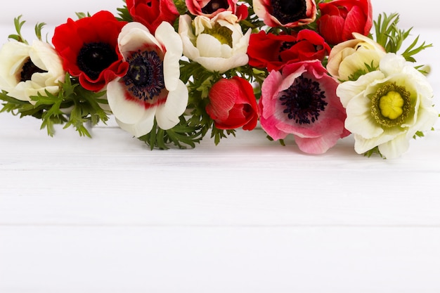白と赤のアネモネの花