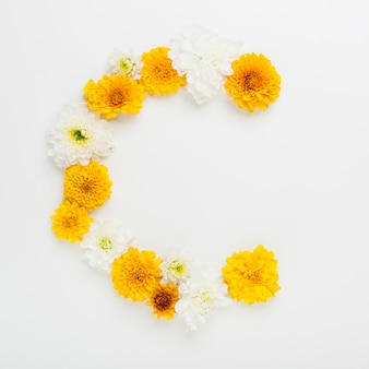 White and yellow flowers arch on white background
