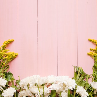 White and yellow flowers on pink