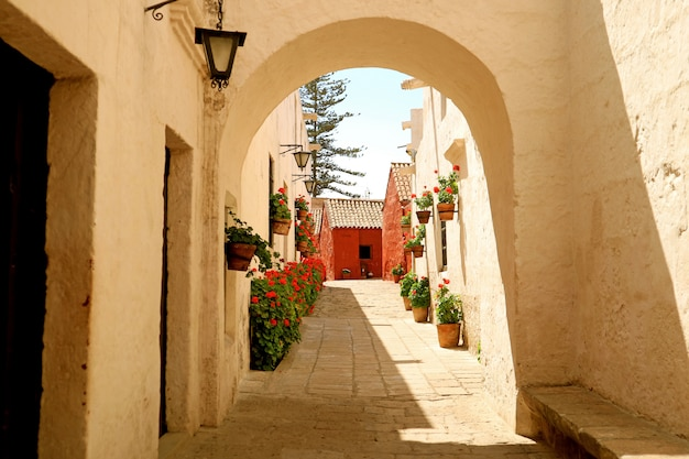 White arch leading to the alley full of red flowering shrubs in monastery of santa catalina