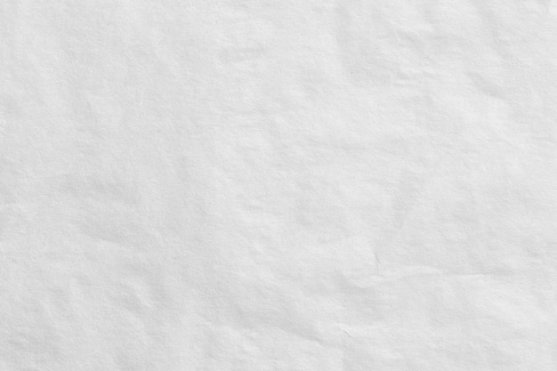 White art paper background.