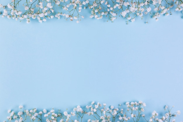 White baby breath's flower border on blue background with copy space for writing the text