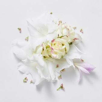 バラとライラックの花から白い背景