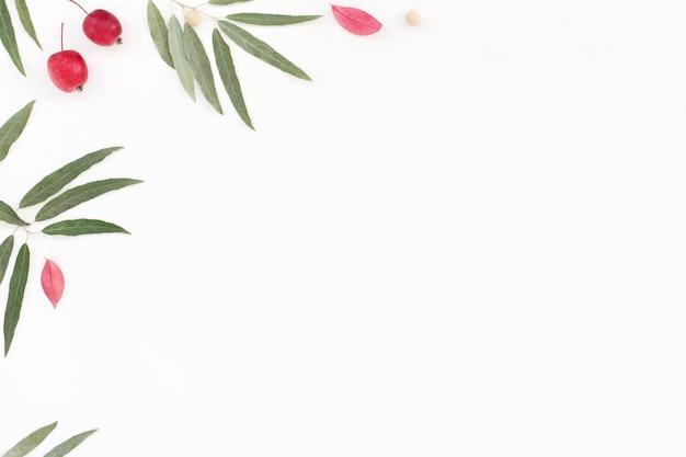 여름 꽃 프레임, 복사 공간 흰색 배경.