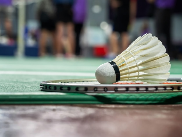 White badminton shuttlecock and racquet on a green court.