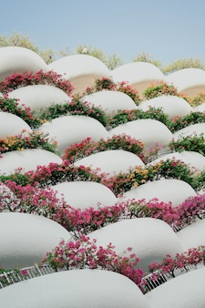 White balconies with flowers