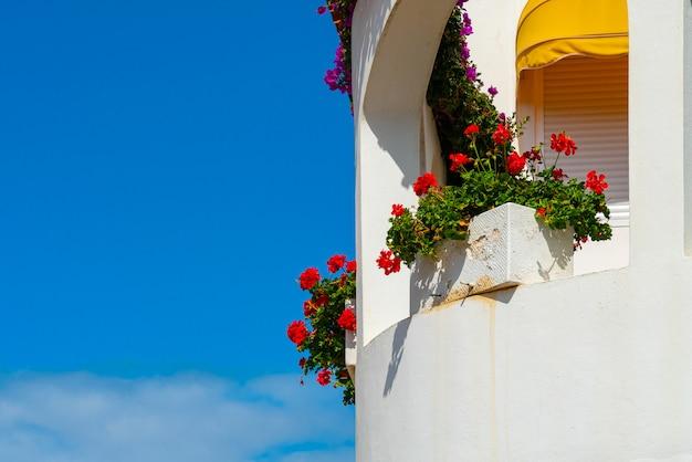 White balcony with red flowers against bright blue sky, puerto de la cruz, tenerife, spain