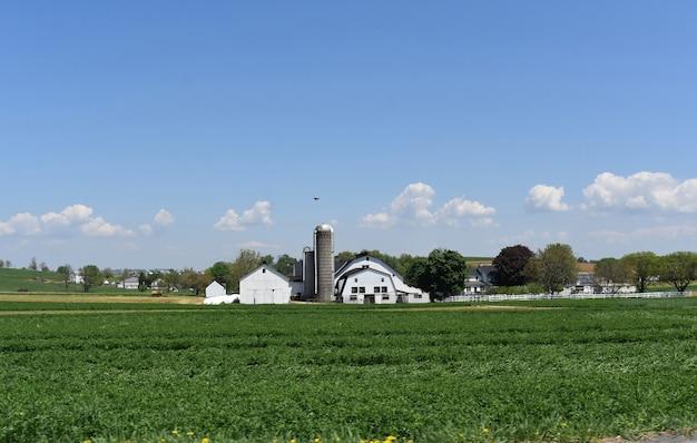 緑豊かな植生に囲まれた白い納屋とサイロ。